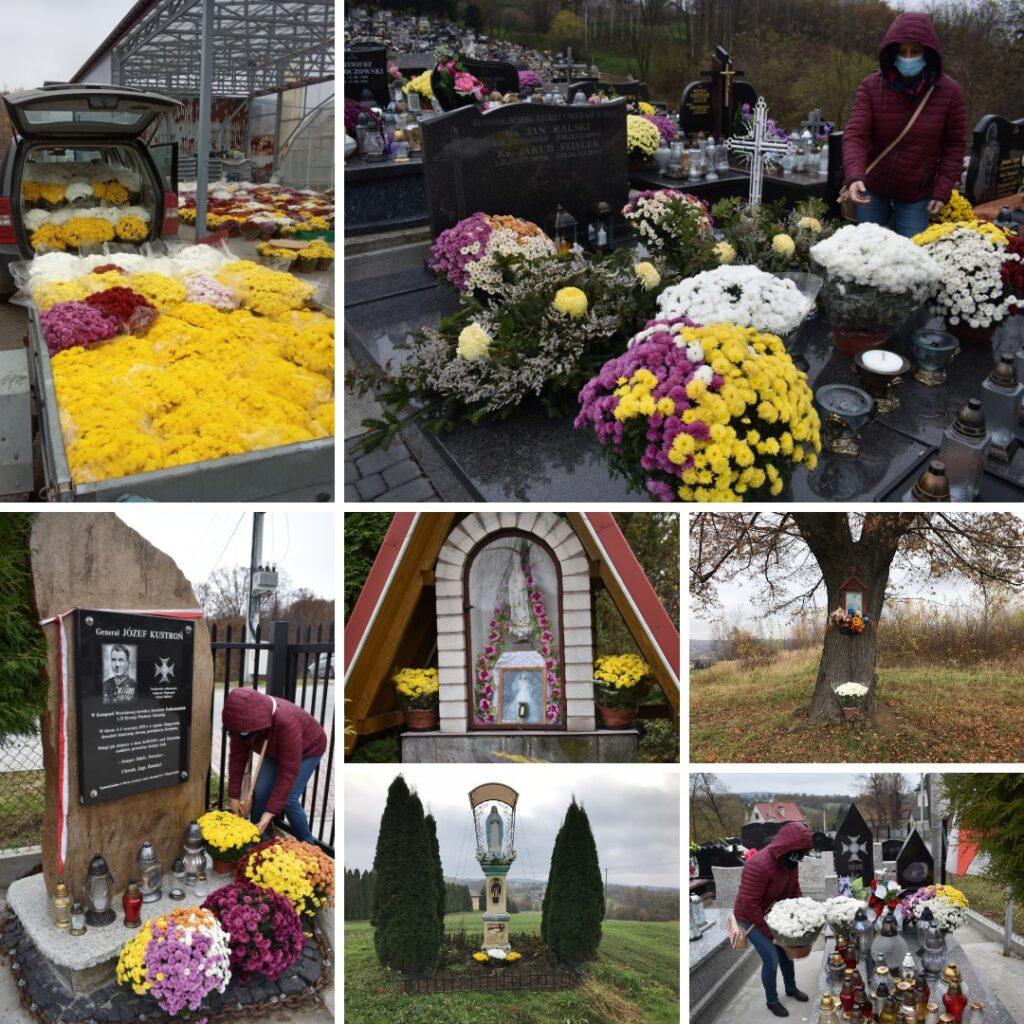 Akcja Chryzantema w Głogoczowie